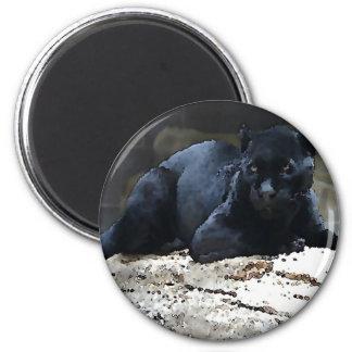 Black Jaguar Magnet