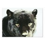 Black Jaguar Panther Eyes Invitation