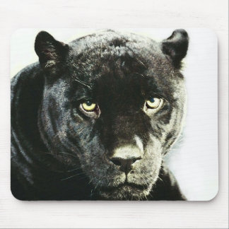 Black Jaguar Panther Mouse Pad