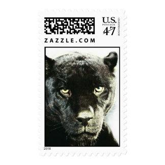 Black Jaguar Panther Postage