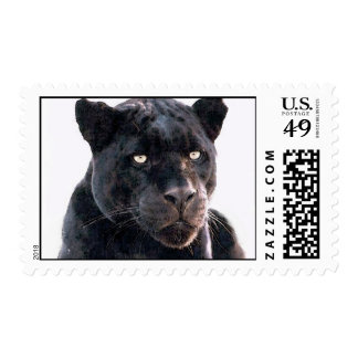 Black Jaguar Postage