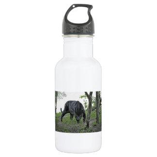 Black Jaguar Stalking Stainless Steel Water Bottle