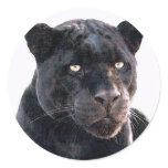 Black Jaguar Sticker