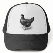 black java hen trucker hat