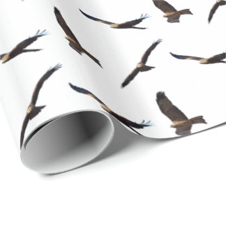 Black Kite Frenzy Wrapping Paper (Choose Colour)