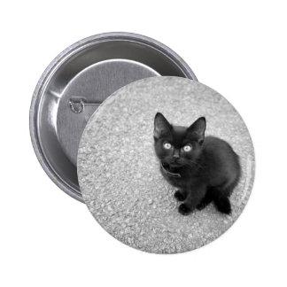 Black Kitten Pinback Button