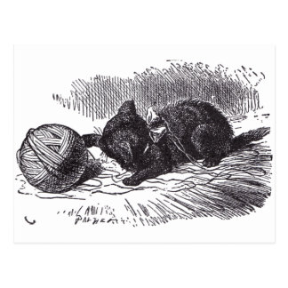 Black Kitten Postcard