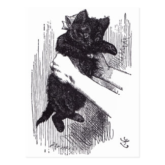 Black Kitten Postcards