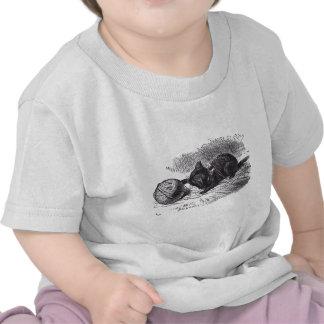 Black Kitten Shirt