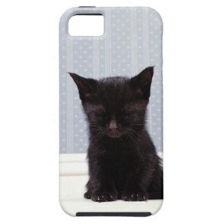 BLACK KITTEN SLEEPING iPhone SE/5/5s CASE
