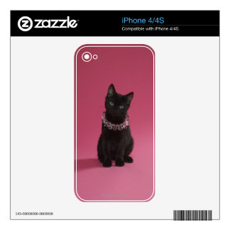 Black kitten wearing jeweled necklace iPhone 4 skin