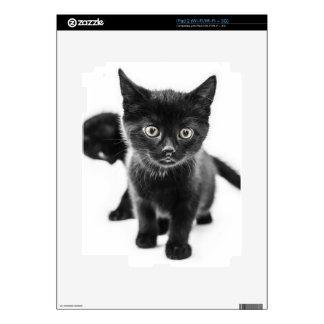 black kittens iPad 2 decals