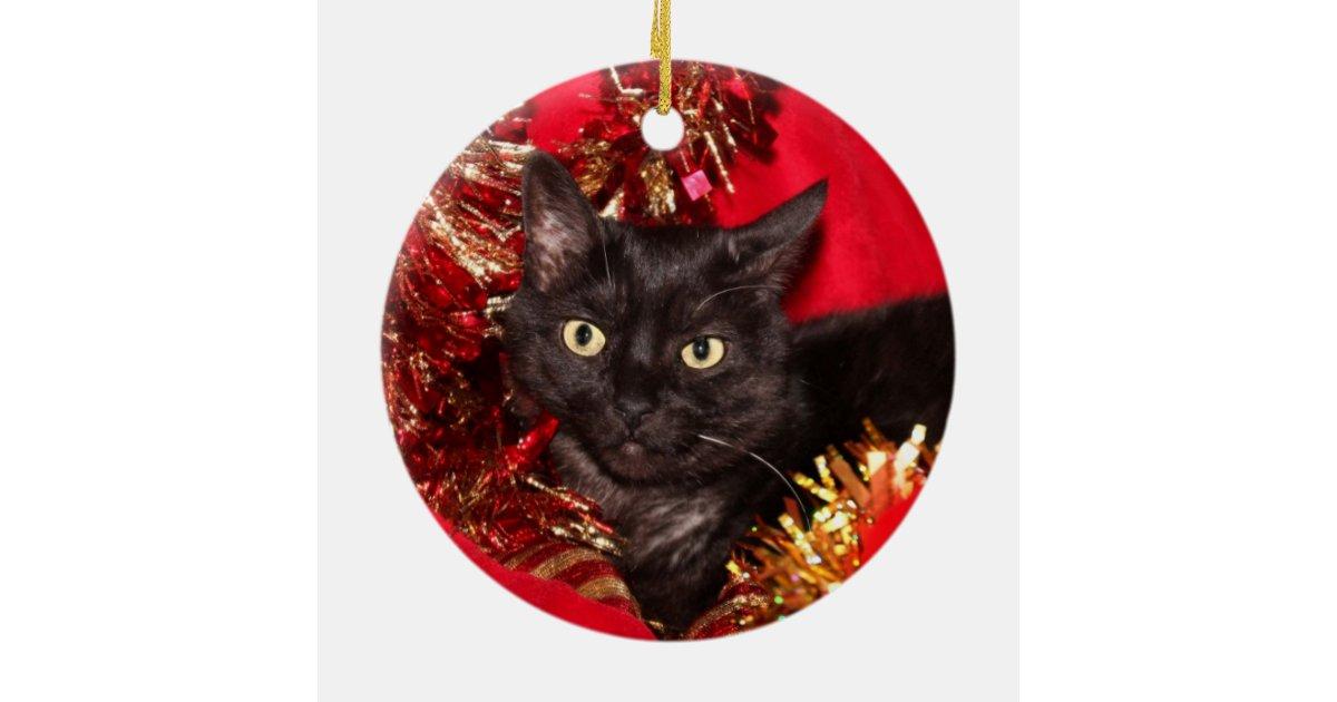 black kitty cat christmas ceramic ornament zazzlecom - Black Cat Christmas Ornament