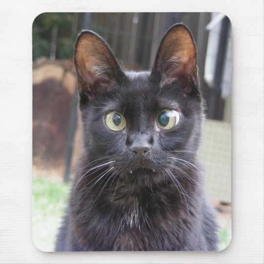 Black Kitty Cat Mouse Pad