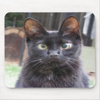 Black Kitty Cat Mousepads