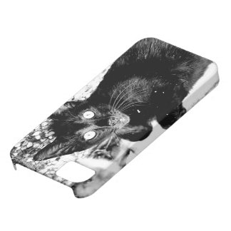Black Kitty Kat iPhone 5 Covers