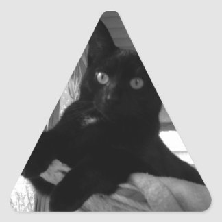 Black Kitty Triangle Sticker