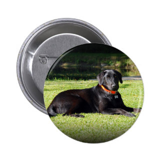 Black Lab 2 Inch Round Button