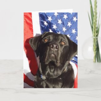 Black Lab and Flag Greeting Card