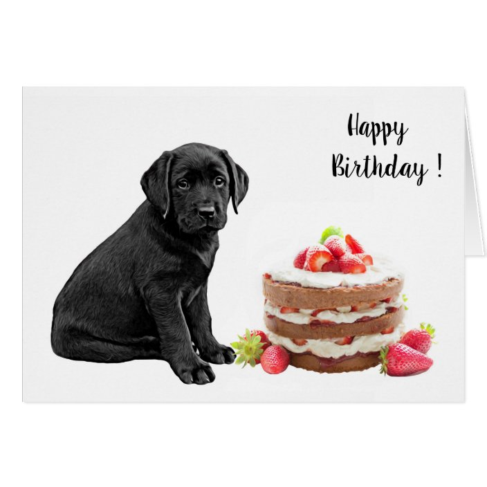 Pleasant Black Lab Birthday Card Dog Cake Birthday Zazzle Com Personalised Birthday Cards Veneteletsinfo