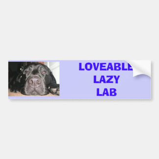 Black Lab Bumper Sticker