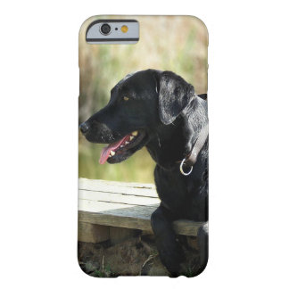 Black Lab Barely There iPhone 6 Case