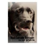Black Lab Dog Breeder Business Card