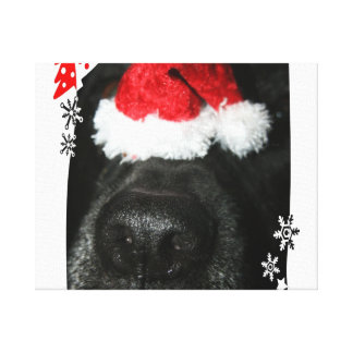 Black lab dog nose with santa hat photograph stretched canvas prints