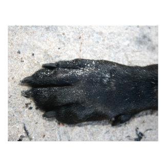 black lab dog paw animal design on sand custom flyer