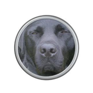 Black Lab Dog Speaker