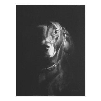 Black Lab Dog Watercolor by Paul Jackson Postcard