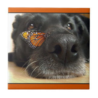 BLack Lab Dog With Butterfly Tile