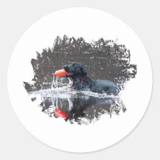 Black lab fetching floatie classic round sticker