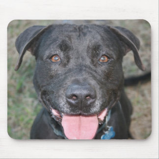 Black lab head shot happy with tongue close up mouse pad