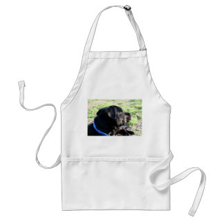 Black Lab Head Turned Away Picture Adult Apron