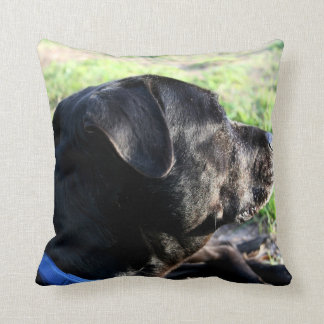 Black Lab Head Turned Away Picture Throw Pillow