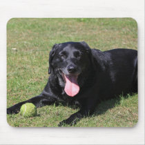 black lab laying.png mouse pad