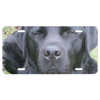 Black Lab License Plate