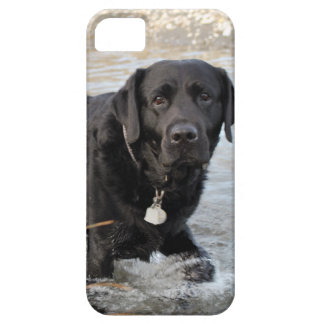 Black Lab Love iPhone SE/5/5s Case