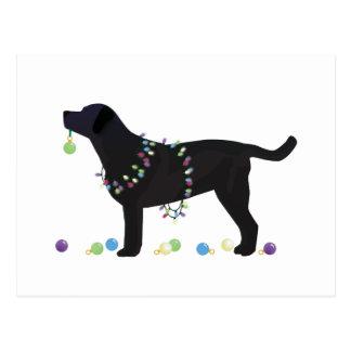 Black Lab Merry Christmas Design Postcard