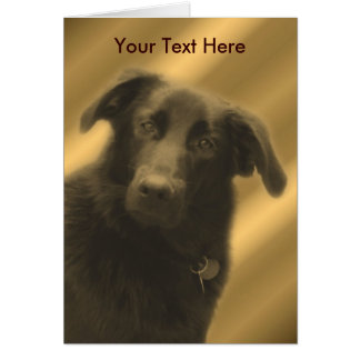 Black Lab Mix Cute Dog Card