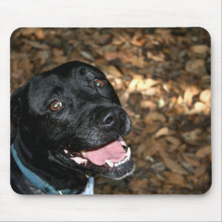 Black Lab Mix dog happy grin against leaves Mouse Pad
