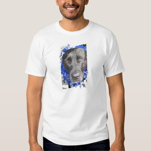 Black lab mix head with blue tinsel shirts