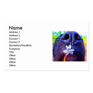 Black lab mix nose, small purple flower picture Double-Sided standard business cards (Pack of 100)