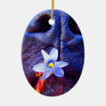 Black lab mix nose, small purple flower picture christmas tree ornaments