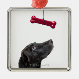 Black lab mixed dog with red dog bone square metal christmas ornament
