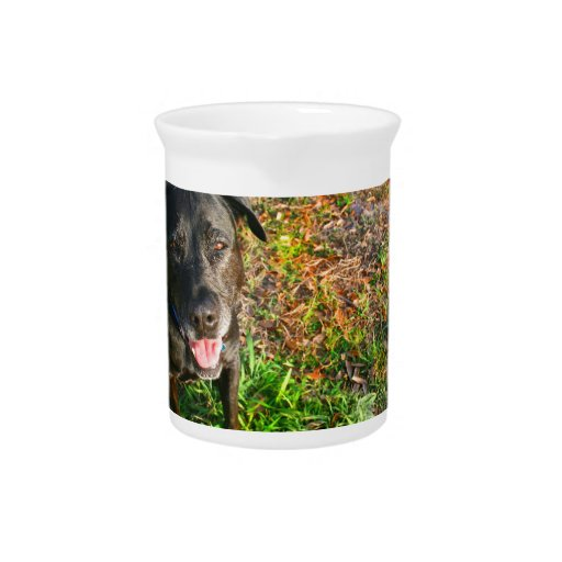 Black Lab on Left Grass on right picture Beverage Pitchers