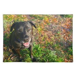 Black Lab on Left Grass on right picture Place Mat
