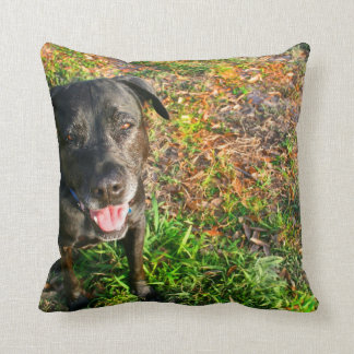 Black Lab on Left Grass on right picture Throw Pillow