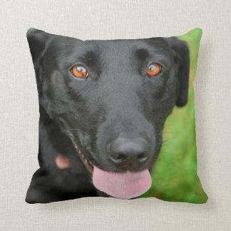 Black Lab Pillow